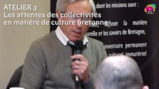 Syntèse atelier 3 : Les attentes des collectivités en matière de culture bretonne (offre, diversité, complémentarité)