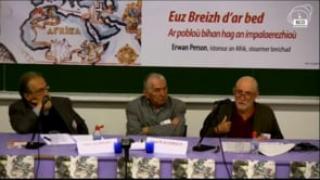 Yves Plasseraud - Yves Person et  les minorités culturelles dispersées (18'21)