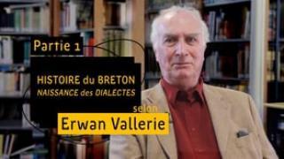 Histoire du breton - Naissance des dialectes (partie 1)